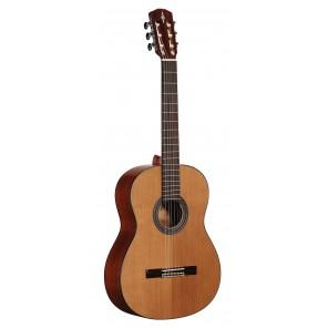 ALVAREZ AC65 ACOUSTIC Guitarra clásica de cuerda de Nylon de la serie Artist Fabricada en madera de Caoba con tapa sólida de Cedro Rojo y perfilado de PaloRosa Brazo de Caoba semi-brilloso con diapasón PaloRosa Clavijero y puente de madera PaloRosa Cejill